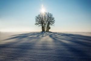 winter-1965902_1920